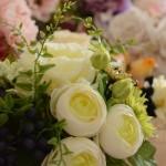 誕生花や花言葉で、気持ちを伝えよう!